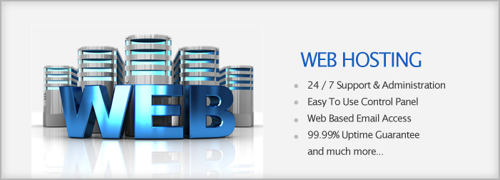 Windows Web Hosting India