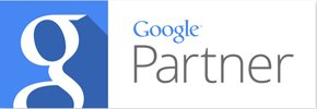 Websolutions India Google Partner