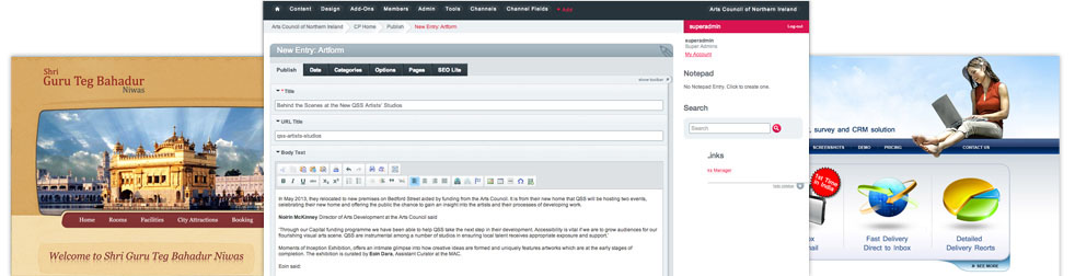 Screenshots showing some Websolutuions India websites and our Content Management System.